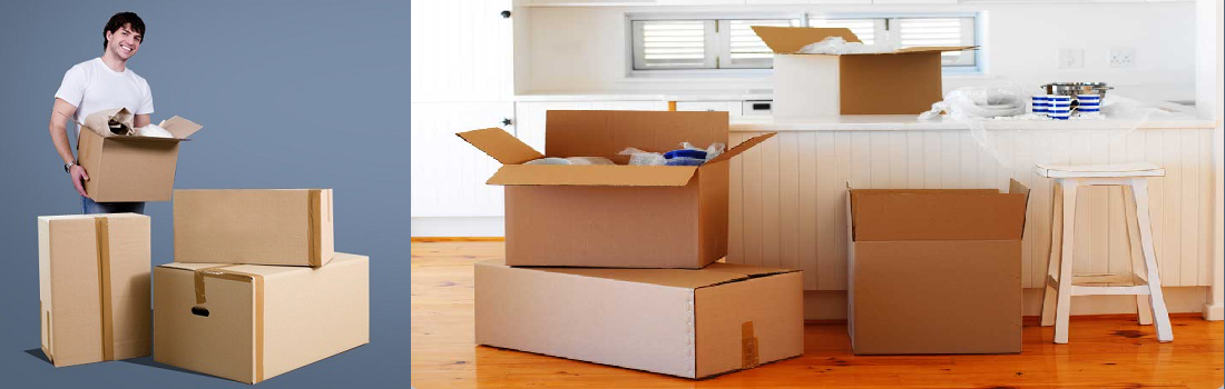 Why You Need Professionals for a Long Distance Move?